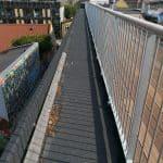 Sedumtag København ungdomsboliger