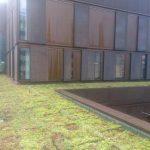 Grønt tag på Bispebjerg hospital  004
