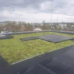 Bagsværdlund Etageboliger - Udførelse af grønne tage